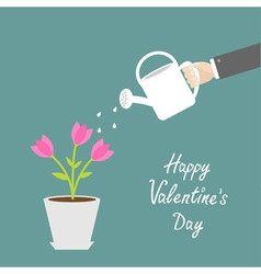 Happy Valentines Day Love card Hand watering can vector image vector image