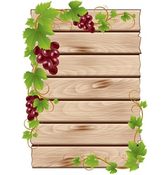 background with grapes vector image