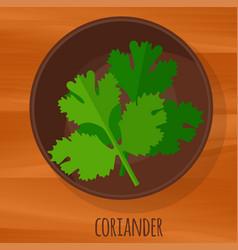 Coriander flat design icon vector