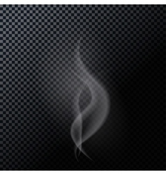 Naturalistic Smoke Isolated on Dark Background vector image
