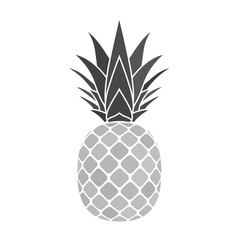 Pineapple gray icon vector