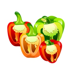 Icon bell pepper vector