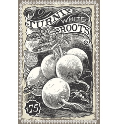 Vintage greengrocer - turnip advertising vector
