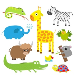 Cute animal set Baby background Koala alligator vector image