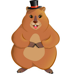 Marmot in the bowler hat vector