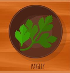 Parsley flat design icon vector
