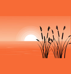 silhouette of coarse grass on riverbank vector image
