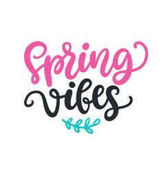 spring vibes modern calligraphy quote vector image