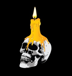 Candle on a skull vector image