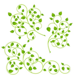 Collection vector image vector image