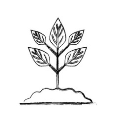 Figure plant with ground to save and care vector