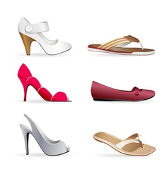 lady footwear's vector image