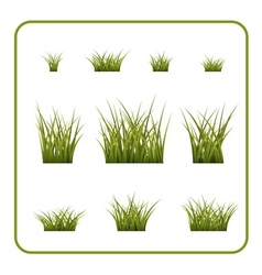 Green grass bushes set isolated vector
