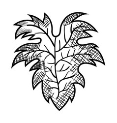 Best wine leaf icon vector