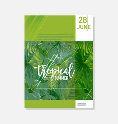 Brochure template tropical palms summer graphic vector