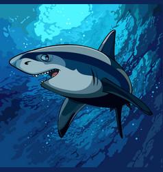 Cartoon shark swimming underwater in the blue sea vector