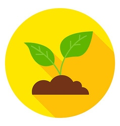 Growing Plant with Ground Circle Icon vector image vector image