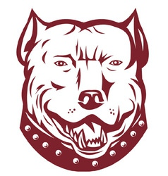 pitbull mongrel symbol vector image