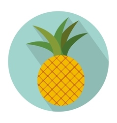 Colorful circular shape with pineapple fruit vector