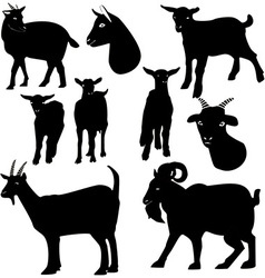 Goats silhouette vector