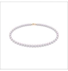 Isolated pearl necklace vector image vector image