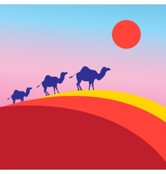 many of camels vector image