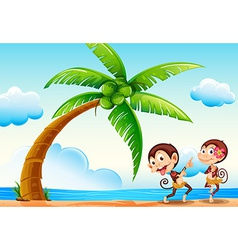 Monkeys and beach vector image vector image