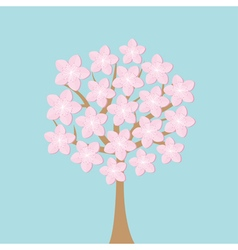 Sakura tree flowers japan blooming cherry blossom vector