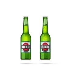 Beer bottles isolated vector image vector image