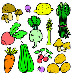 Collection stock of vegetables object vector
