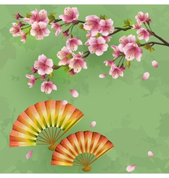 Vintage japanese background with sakura and fans vector