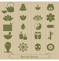 Set of spa icons vector image vector image