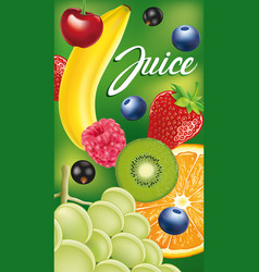Packaging with different fruits and berries vector