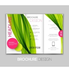 Template leaflet design with color lines vector