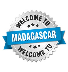 Madagascar 3d silver badge with blue ribbon vector