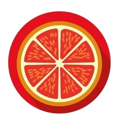Colorful circular shape with slice orange fruit vector