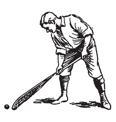 correct way to pick up ball lacrosse vintage vector image