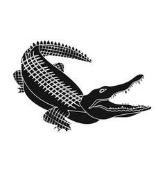 Crocodile dangerous predator reptile nile vector