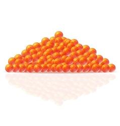 Caviar 01 vector