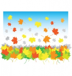falling maple leaves in heap vector image vector image