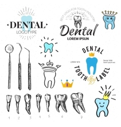 Dental labels and icons set vector