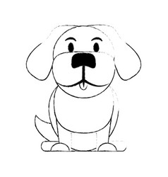 Dog pet icon image vector