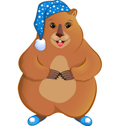 marmot in the nightcap vector image