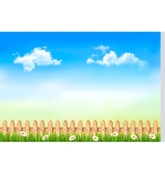 Summer nature background with green grass and vector image vector image