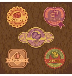 Abstract vintage style fruit label vector