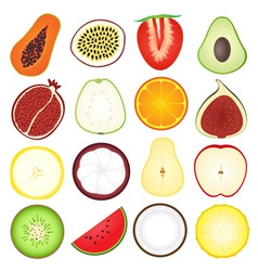 Fresh fruits icon collection vector