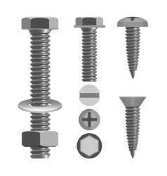 Bolts and nuts with different screw heads types vector