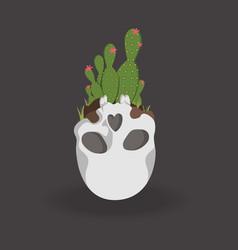 cactus in skull vector image