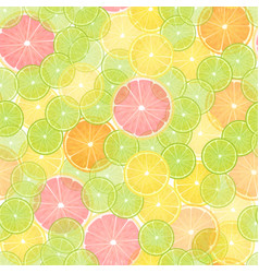 Colorful citrus lemon seamless pattern vector
