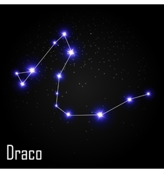 Draco Constellation with Beautiful Bright Stars on vector image